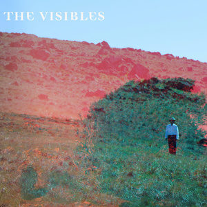 the+visibles
